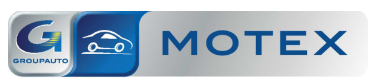 fleetinsight Motex groupAuto logo